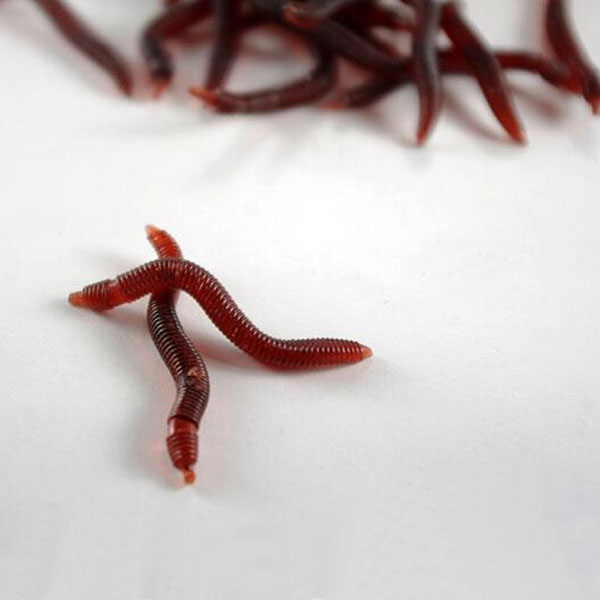 1pc Soft EarthWorm Fishing Lures Silicone Red Worms Bait Plastic