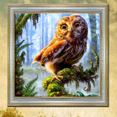 30x30cm 5D DIY Owl Diamond Painting Resin Full Rhinestone Home Decoration Animal Cross-stitch Kit