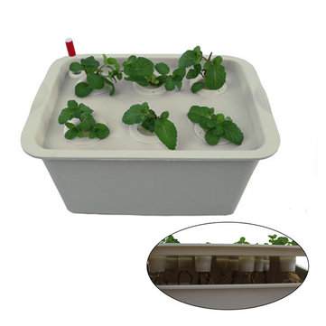 Oxygen Mini 11 Hole Water Culture Seedling Boxes Soilless Cultivation Planting Boxes